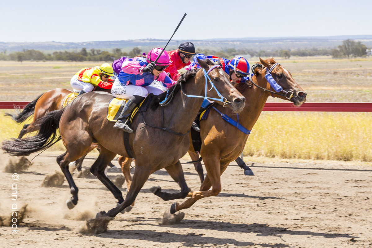 Taroom Races - Dawson Jockey Club